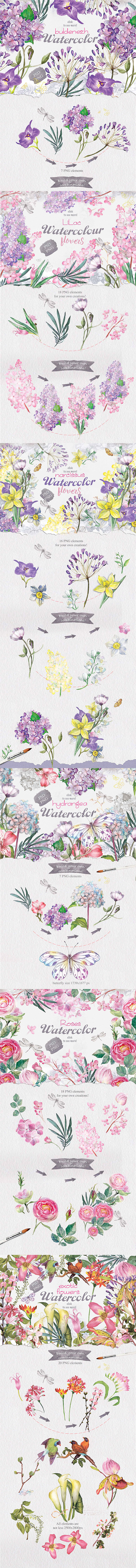 summer-best-watercolor-collection