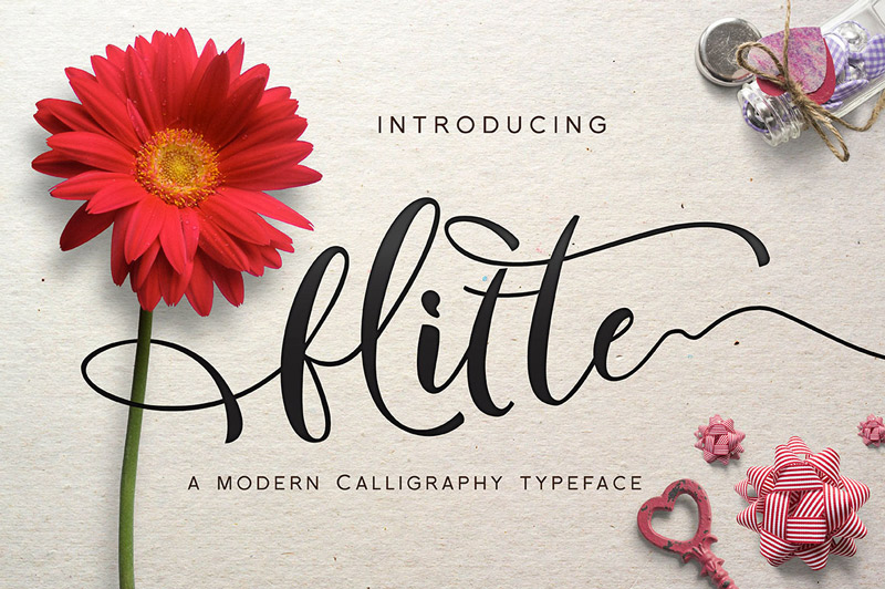collection-of-11-unique-fonts-cover-preview-01