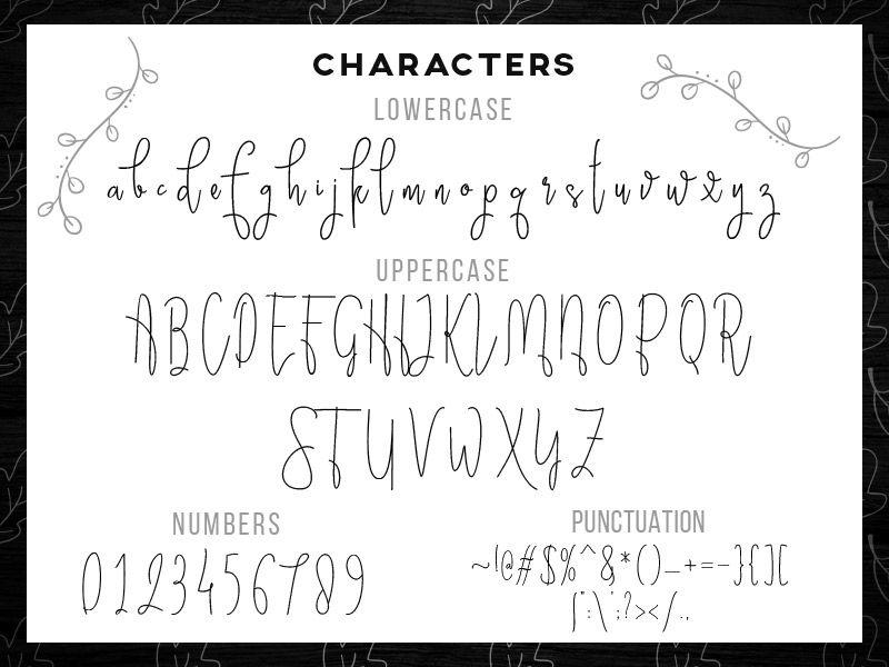 steller-bundle-11-fonts-06