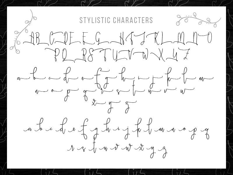 steller-bundle-11-fonts-07