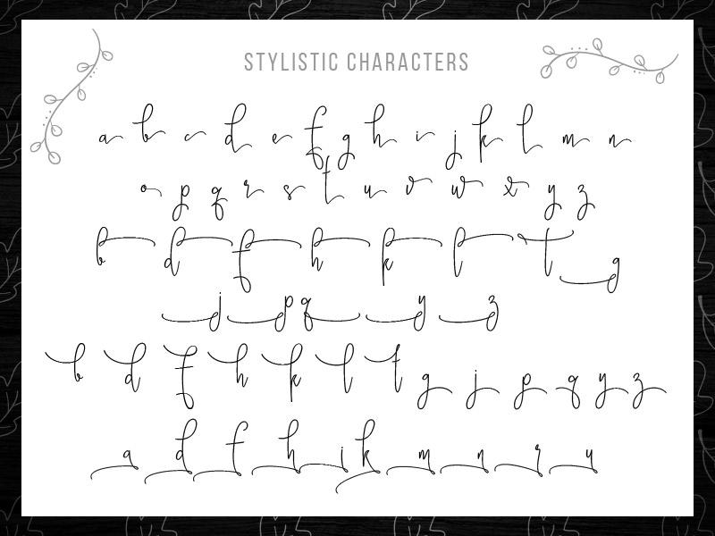 steller-bundle-11-fonts-08