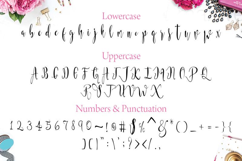 steller-bundle-11-fonts-18