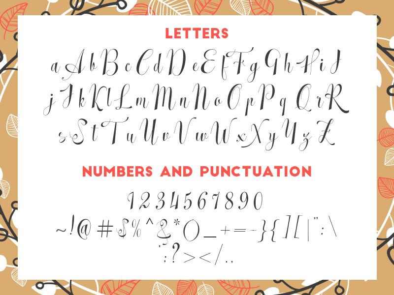 steller-bundle-11-fonts-20