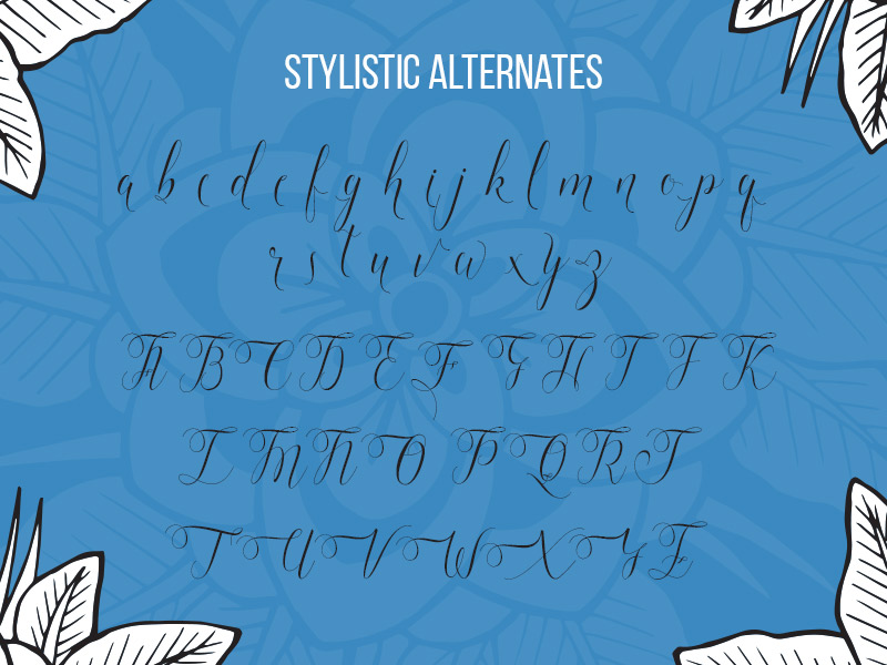 steller-bundle-11-fonts-24
