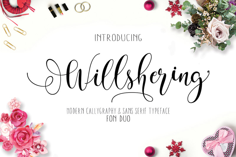 steller-bundle-11-fonts-28