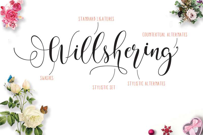 steller-bundle-11-fonts-30