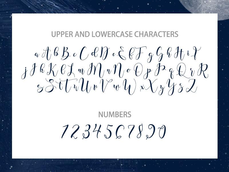 steller-bundle-11-fonts-33
