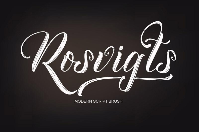 steller-bundle-11-fonts-40