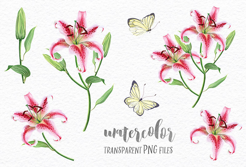 FREE-Delicate-Watercolor-Lilies-Preview-01