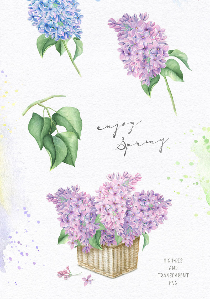 Spring Watercolor Collection 27