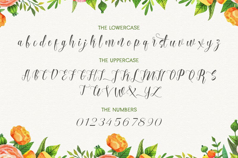 10 Awesome, unique calligraphy fonts Preview 19