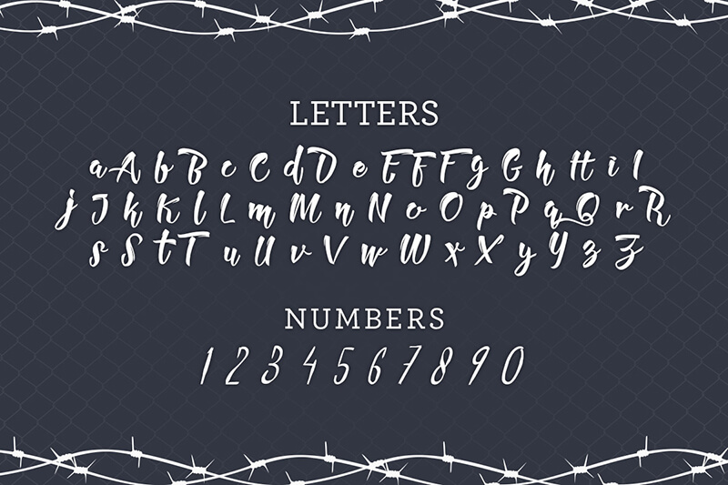 10 Awesome, unique calligraphy fonts Preview 2
