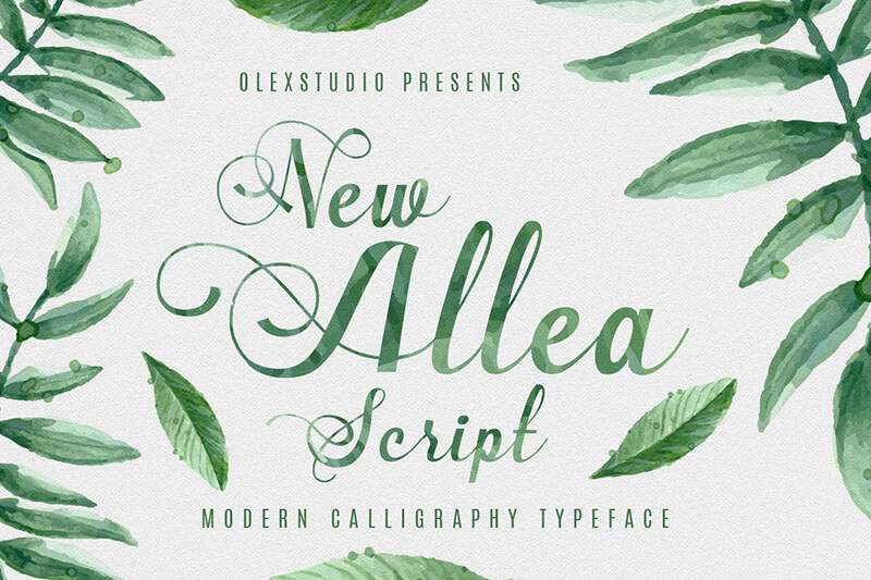10 Awesome, unique calligraphy fonts Preview 22