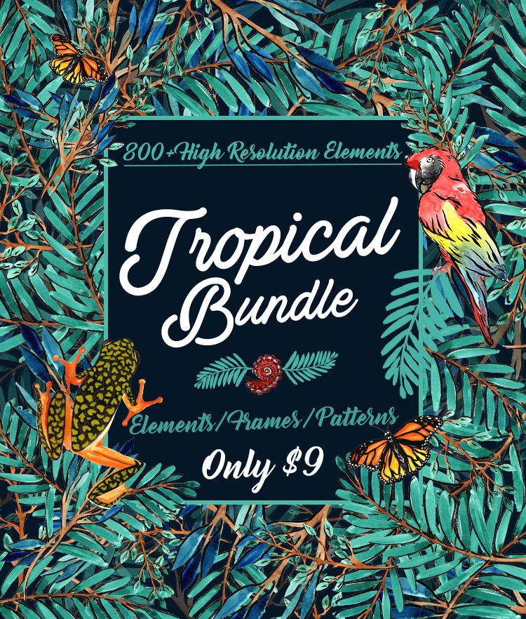 Tropical Vector Designs Bundle 800+