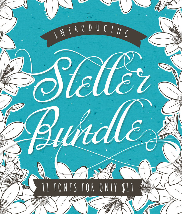 Steller Bundle Cover